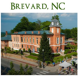 brevard north carolina realty